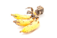 Ripe Banana. On white background Royalty Free Stock Photography
