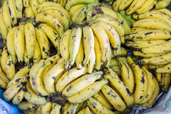 Ripe bananas Stock Photos