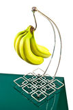 bananas on holder Stock Photos