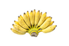 Ripe bananas isolated on white background.Raw food or fruit for health. 1 Stock Image