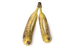 Ripe bananas isolation royalty free stock photo