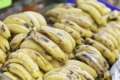 Ripe bananas on a market Stock Photography