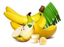 Ripe bananas and vector illustration Stock Photos
