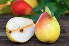 Ripe Bartlett pears Royalty Free Stock Photo