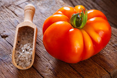 Ripe beefsteak tomato and salt in spice scoop Royalty Free Stock Photo