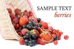 Ripe berries in a basket. Isolated on white background Stock Photography