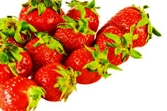 Ripe berries and a large strawberry on a white background Royalty Free Stock Images