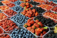 Ripe berries in a plastic container Royalty Free Stock Photos