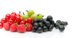 Red and black currants and gooseberries on a white background. Stock Images