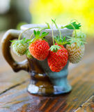 Ripe berries of white and red strawberries in a porcelain coffee cup. Stock Photos