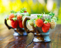 Ripe berries of white and red strawberries in a porcelain coffee cups. Stock Photography