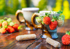 Ripe berries of white and red strawberries in a porcelain coffee cups. Stock Images