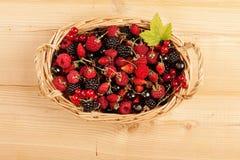 Ripe Berries Royalty Free Stock Image