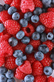 Ripe Berry Background Royalty Free Stock Image