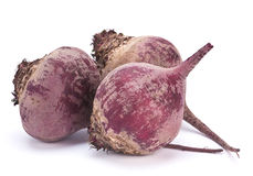 Ripe bet root vegetable Royalty Free Stock Photos