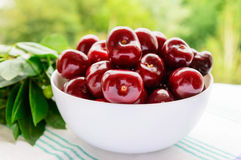 Ripe black cherries in a white bowl on a background of nature. Stock Photo