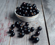 Ripe black currant Royalty Free Stock Photo