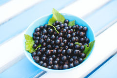 Ripe black currants in a plate Stock Photo