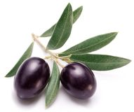 Ripe black olives with leaves. Royalty Free Stock Photography