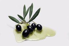 Ripe black olives with leaves Stock Image
