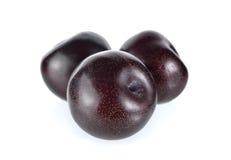 Ripe black plum on white background Royalty Free Stock Image