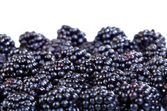 Ripe blackberries Royalty Free Stock Images