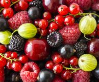 Ripe blackberries, blackcurrants, cherries, red currants, raspberries and gooseberries. Mix berries and fruits. Top view. Backgrou. Nd berries and fruits stock images