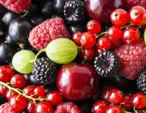 Ripe blackberries, blackcurrants, cherries, red currants, raspberries and gooseberries. Mix berries and fruits. Top view. Background berries and fruits royalty free stock image