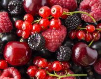 Ripe blackberries, blackcurrants, cherries, red currants and raspberries. Mix berries and fruits. Top view. Background berries and. Fruits. Various fresh summer Royalty Free Stock Photography
