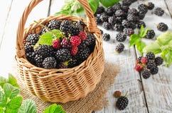 Ripe blackberries Royalty Free Stock Images