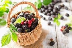 Ripe blackberries Royalty Free Stock Photos