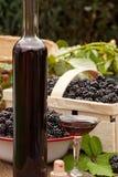 Ripe blackberries and Liquer Stock Photos