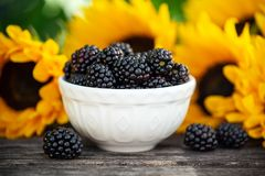 Ripe blackberries in white bowl with sunflower bouquet on wooden table, summer theme stock photography