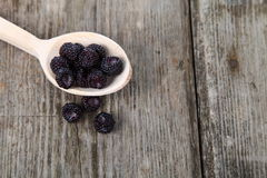 Ripe blackberries in a wooden spoon Stock Photography