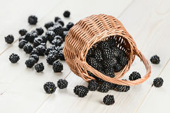 Ripe blackberry in the basket Stock Photos