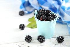 Ripe blackberry Stock Photo