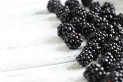 Ripe blackberry Royalty Free Stock Images