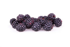 Ripe blackberry fruit with dew Royalty Free Stock Photos