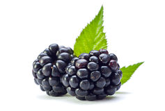 Ripe blackberry Royalty Free Stock Photography