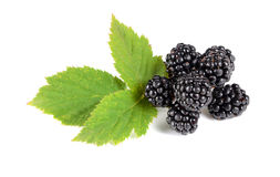 Ripe blackberry with green leaves Royalty Free Stock Images