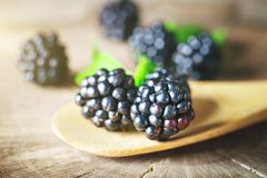 Ripe blackberry on a wooden table. Dark background. Selective focus. Background with copy space stock image