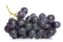 Ripe blue grapes Royalty Free Stock Image