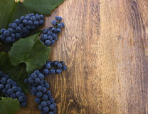 Ripe blue grapes with green leaves on a wooden background closeup. Stock Photo