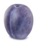 Ripe blue plum isolated Stock Photography