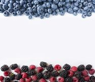 Ripe blueberries, blackberries and raspberries on white background. Sweet and juicy berry at border of image with copy space for t. Ext. Top view. Various fresh Royalty Free Stock Photos