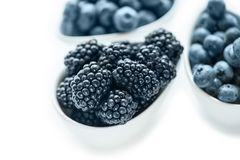 Ripe blueberries and blackberries on white background in white ceramic bowls. Close up. Copy space. stock images