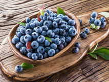 Ripe blueberries in the bowl. Royalty Free Stock Images