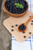 Ripe blueberries in a bowl Royalty Free Stock Photos