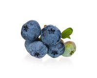 Ripe blueberries Stock Image