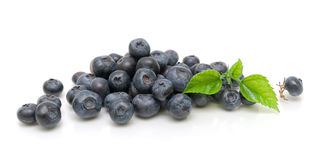 Ripe blueberries isolated on white background close-up Stock Photos